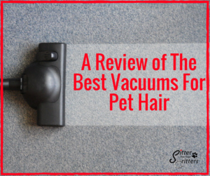 The Best Vacuums for Pet Hair - Sitter For Your Critters