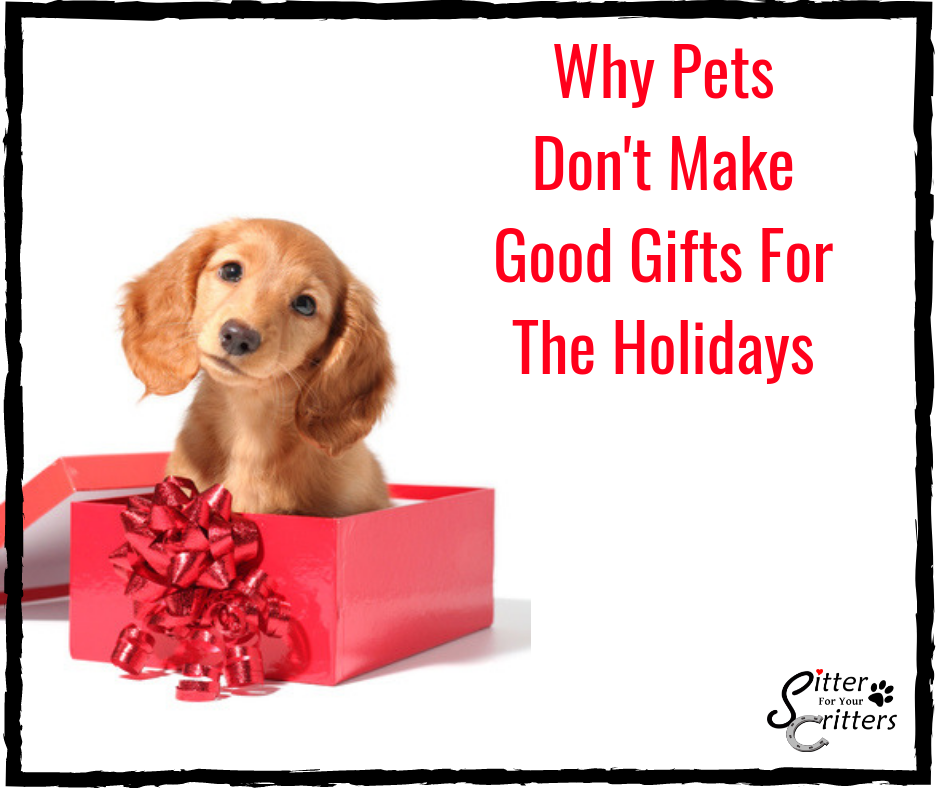 Hereu0027s why pets donu0027t make good gifts for the holidays  sc 1 st  Sitter For Your Critters & Pets As Christmas Gifts - Sitter For Your Critters